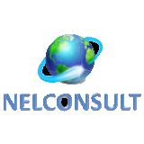 NelConsult Assessoria & Consultoria